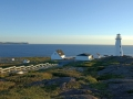 cape-spear-national-historic-site-photo-courtesy-nl-tourism-1